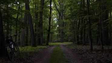 szlaki wielkopolskiego parku narodowego