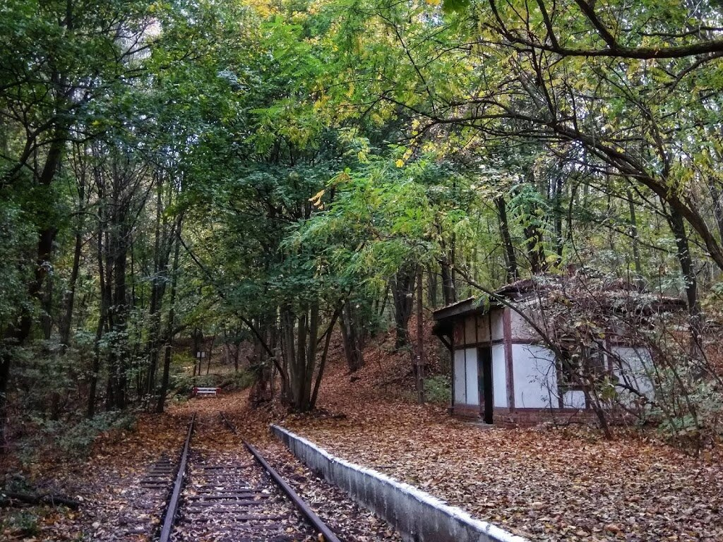 Czerwony szlak PTTK Osowa Góra – Sulęcinek