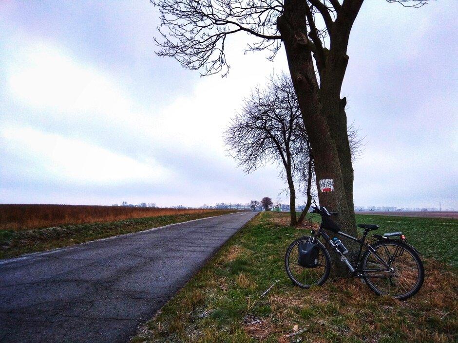 szlaki rowerowe gmina dopiewo