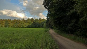 Puszczykowo – Puszczykówko szlak żółty PTTK