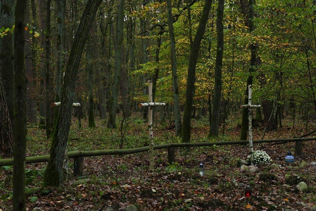 cmentarz kosynierów w wielkopolskim parku narodowym