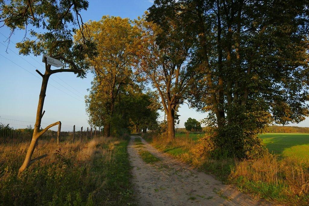 pętla komornicka, wielkopolski park narodowy, wpn