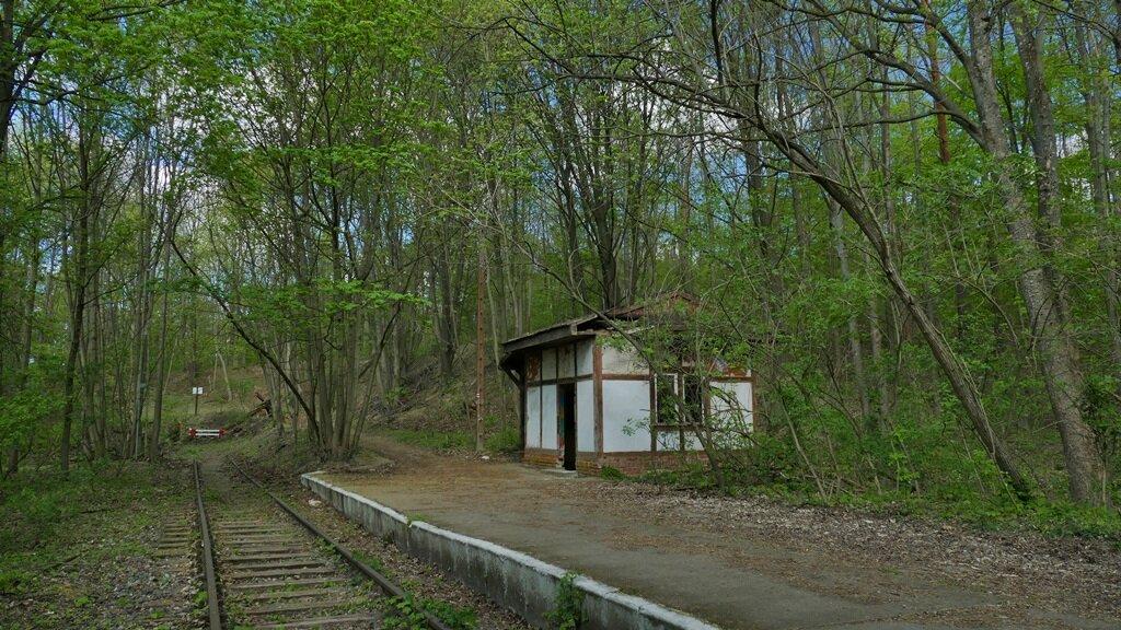 stacja kolejowa osowa góra przy pętli mosińskiej