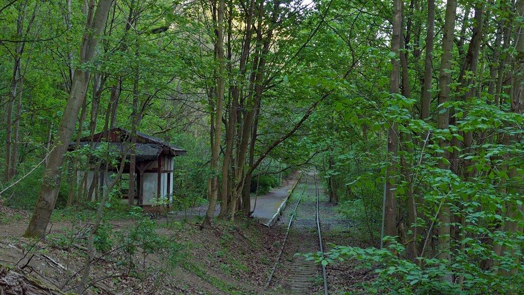 Jedną z atrakcji wielkopolskiego parku narodowego jest stacja kolejowa osowa góra