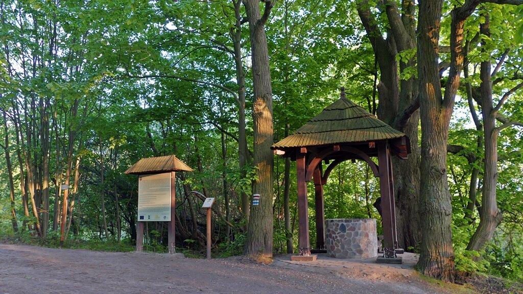 studnia napoleona z którą związana jest jedna z zabawniejszych legend wielkopolskiego parku narodowego