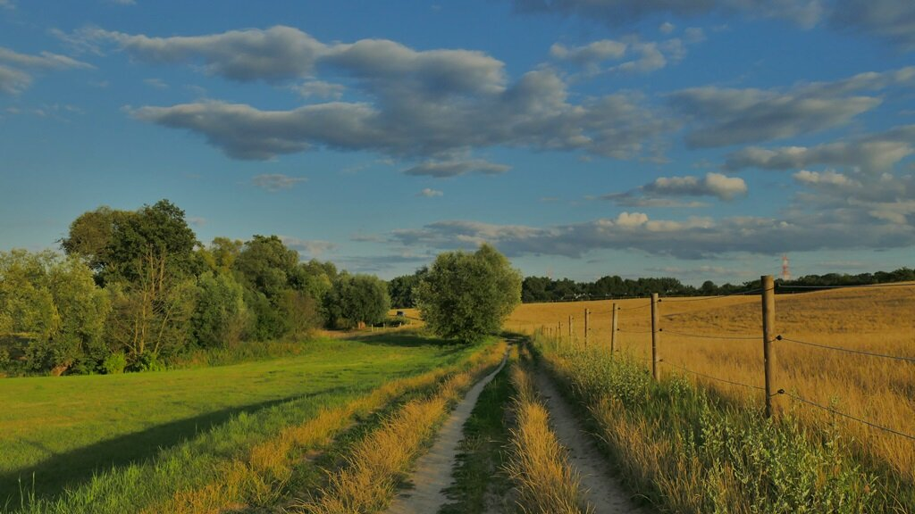 Szlak rowerowy im. Jana Pawła II po gminie Komorniki